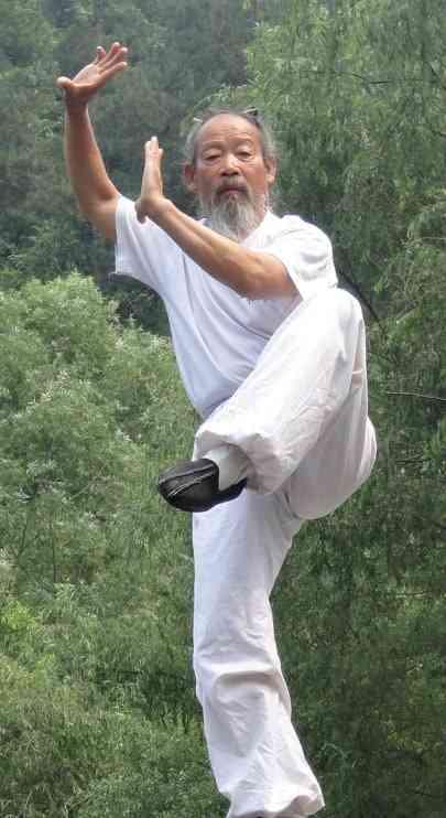 Master Zheng Shi Jie