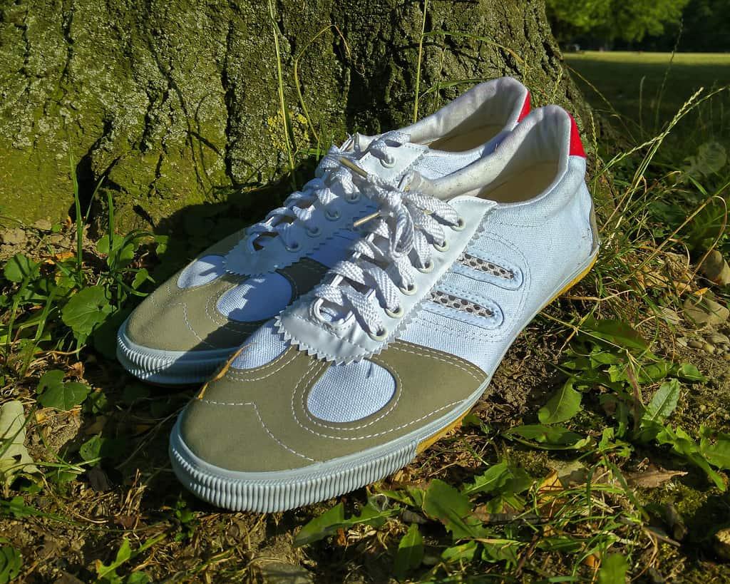 Double Star Wushu Shoes White