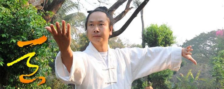 Wudang Style Tai-chi with Taoist Master Li