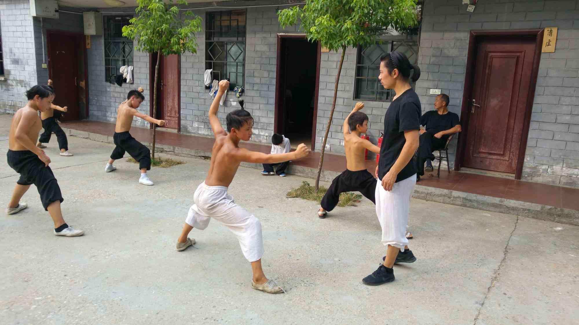 Traditional Wudang Training