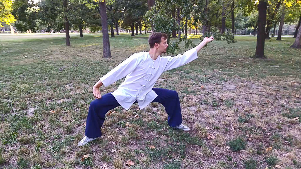 Learning Fu Hu Quan for Beginners Part 4 (Final)