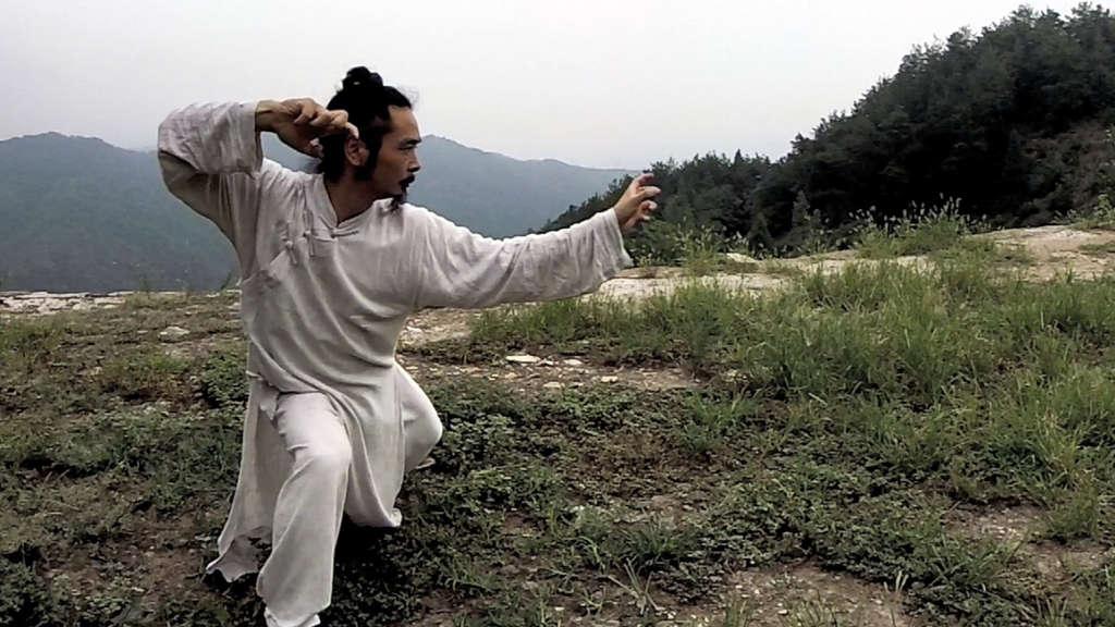 Wudang Long Hua Quan – Master Chen Shiyu
