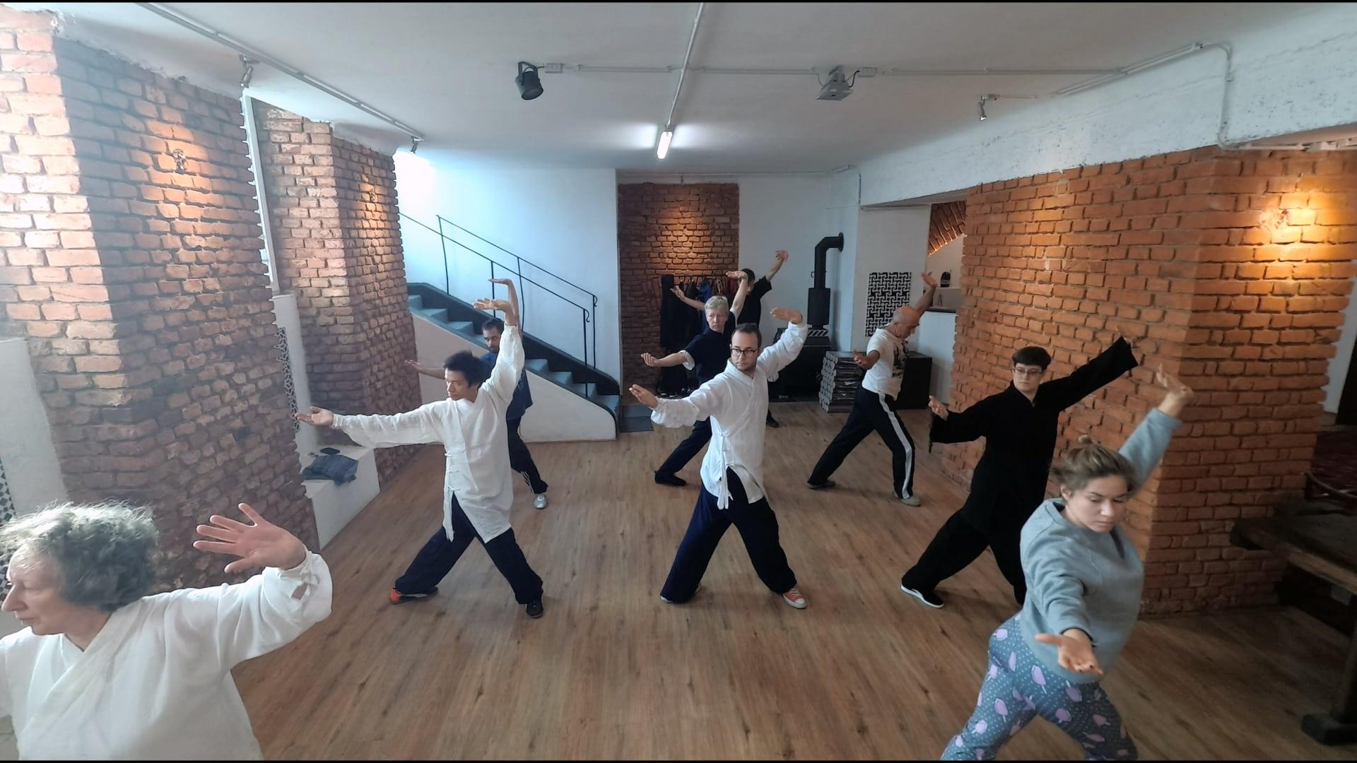 Wuxing Qigong Class with Master Ziji