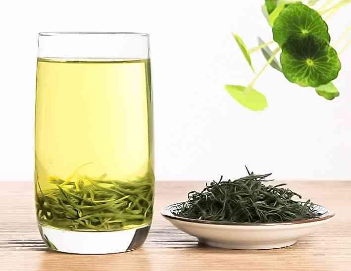 Xinyang Maojian Green Tea