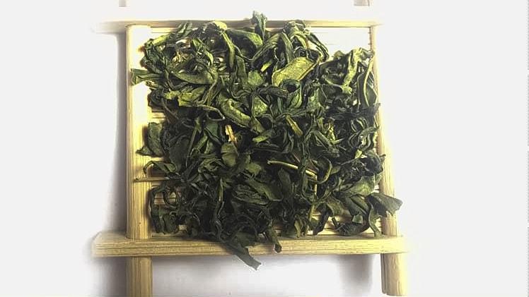 Classic Wholesale Sunshine Green Tea