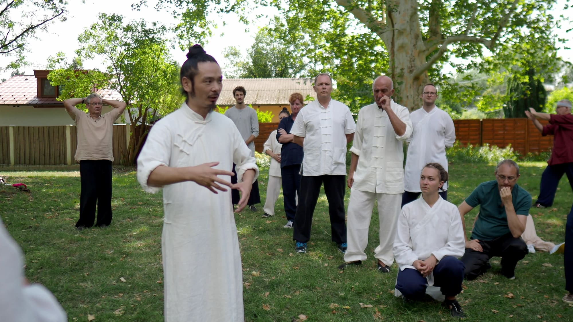 About the Wu Xing Qi Gong Hand Posture