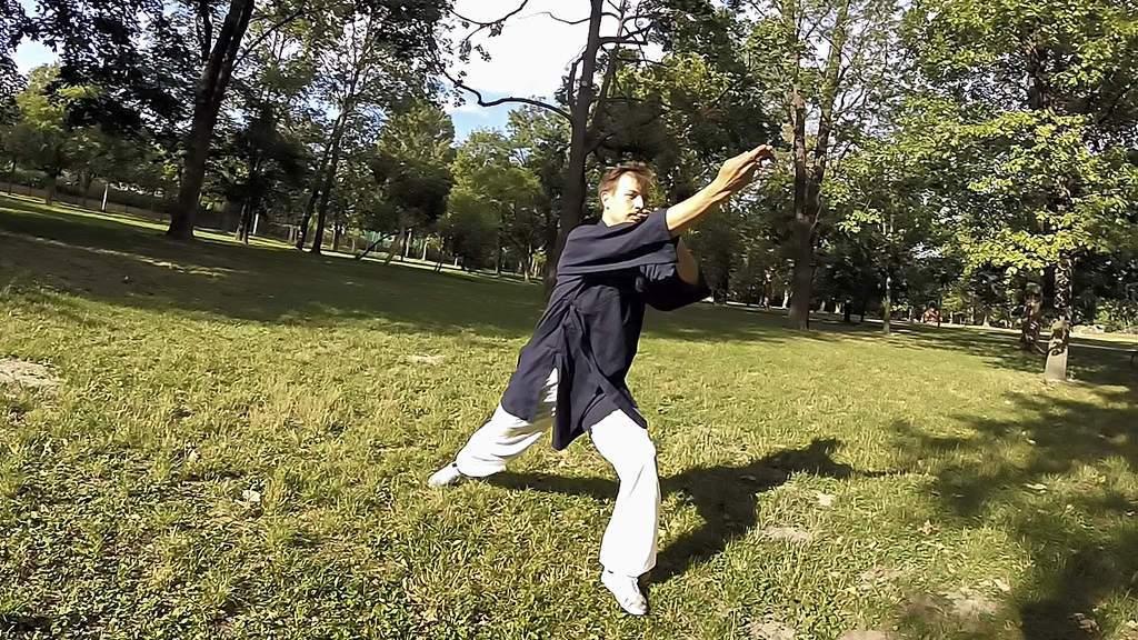 Taming the Tiger – Wu Dang Fu Hu Quan