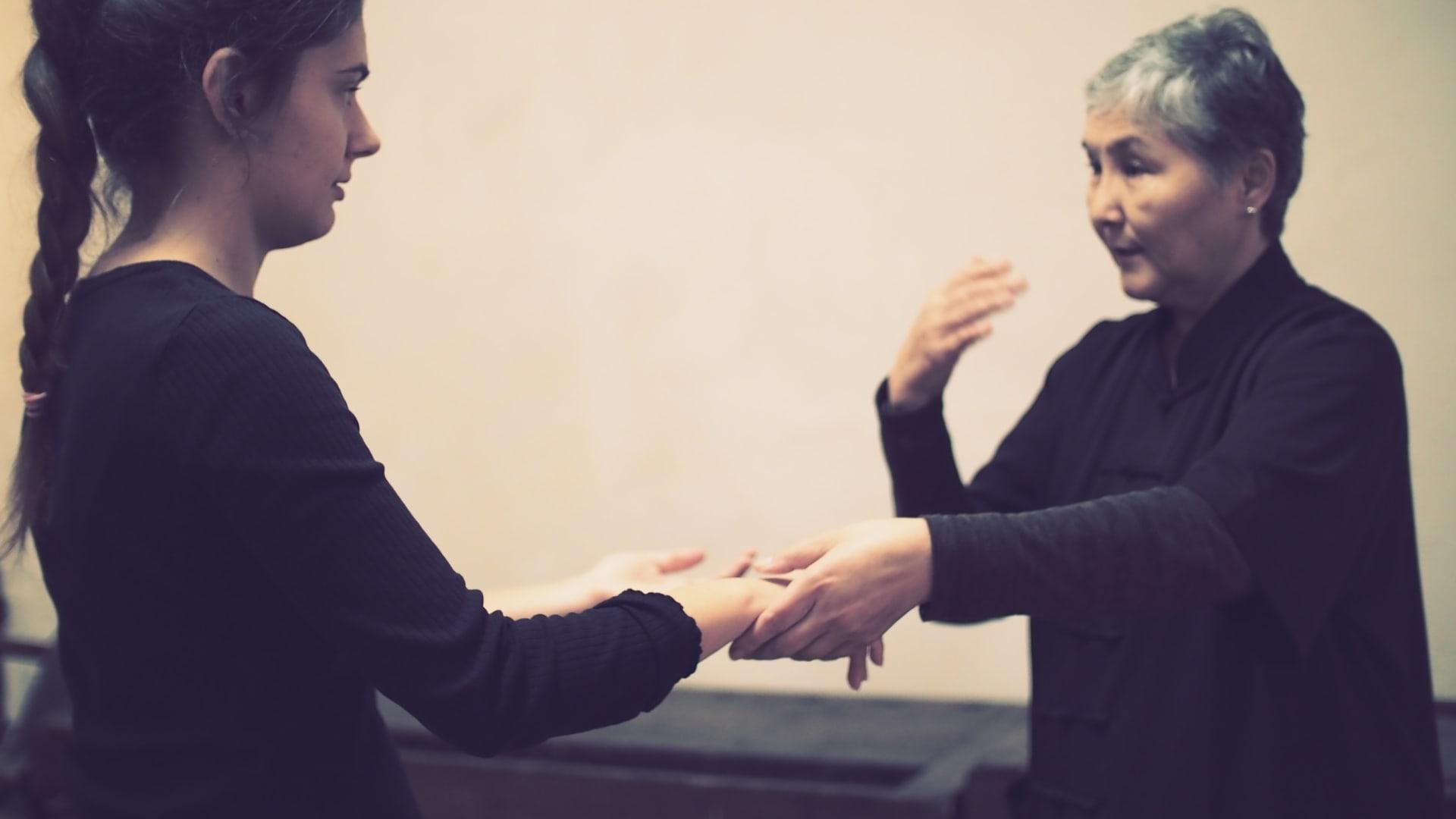 The professional Tai Chi School in Vienna