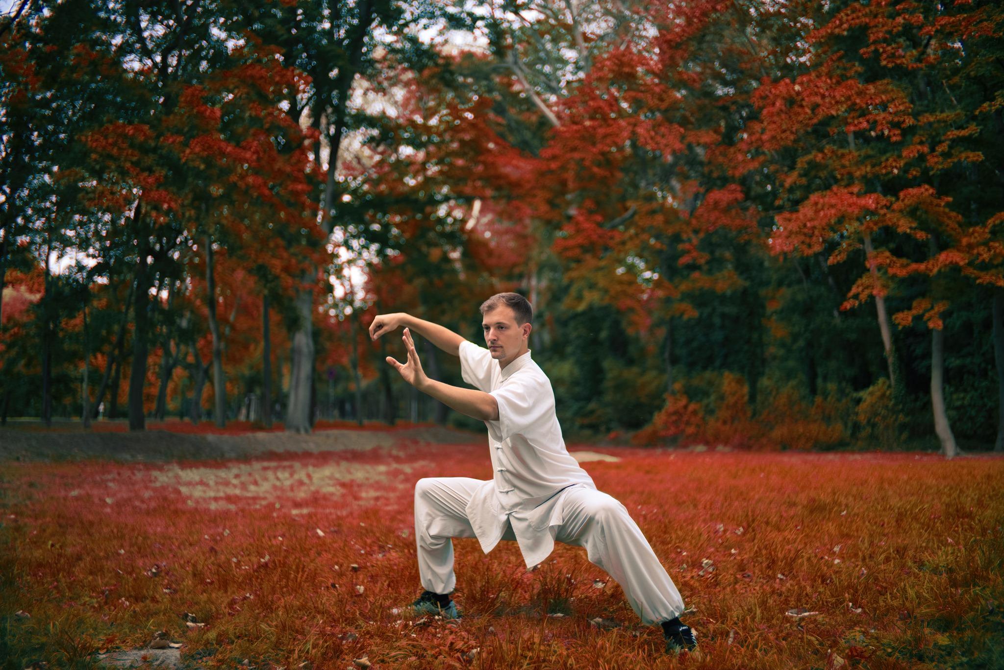 The Three Pillars of Internal Wudang Martial Arts