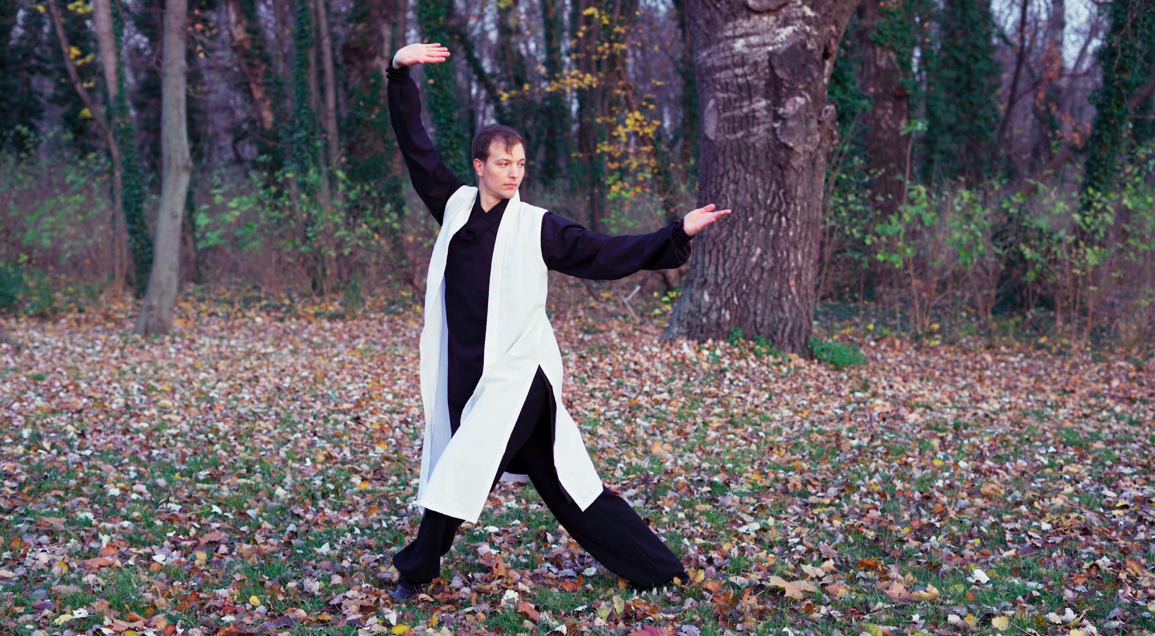 Wu Xing (Five Animal) Qi Gong Hand Postures & Basic Posture Corrections