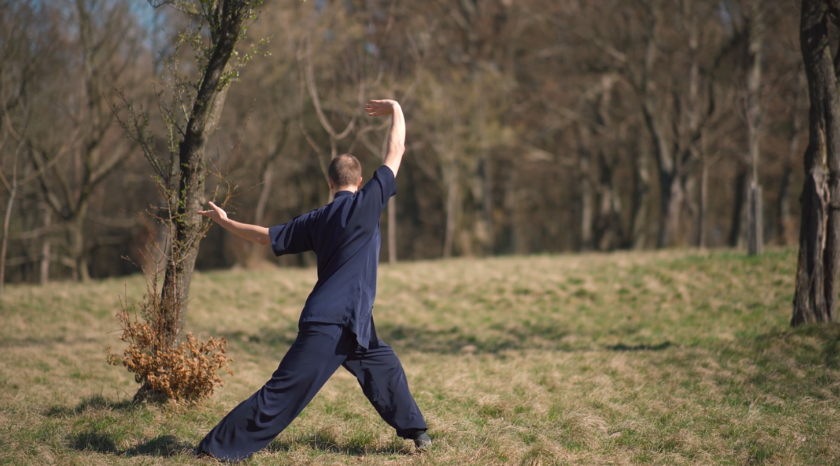 The Best Qi Gong Form Now In Times of Corona Virus