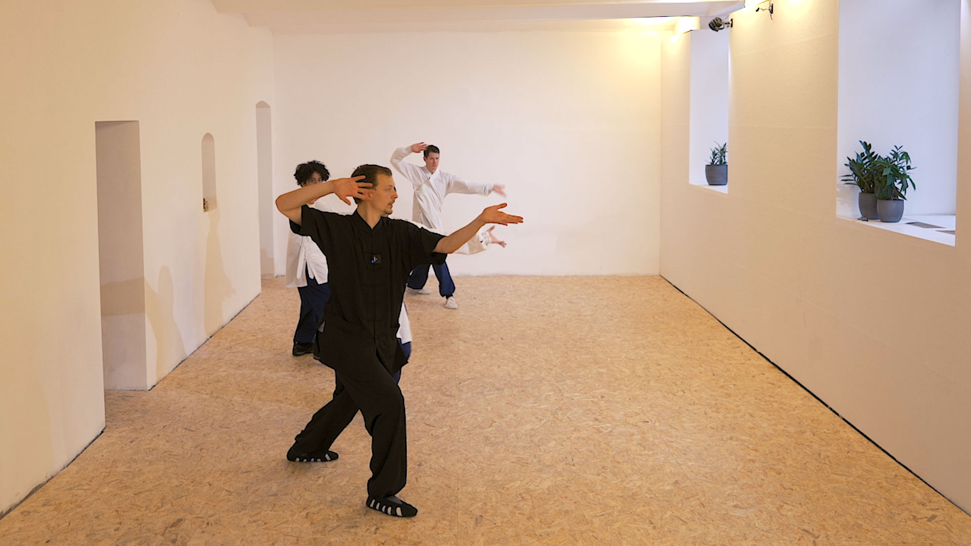 Wudang Fu Hu Quan: Third Sequence – Direct Focus and Explosive Power
