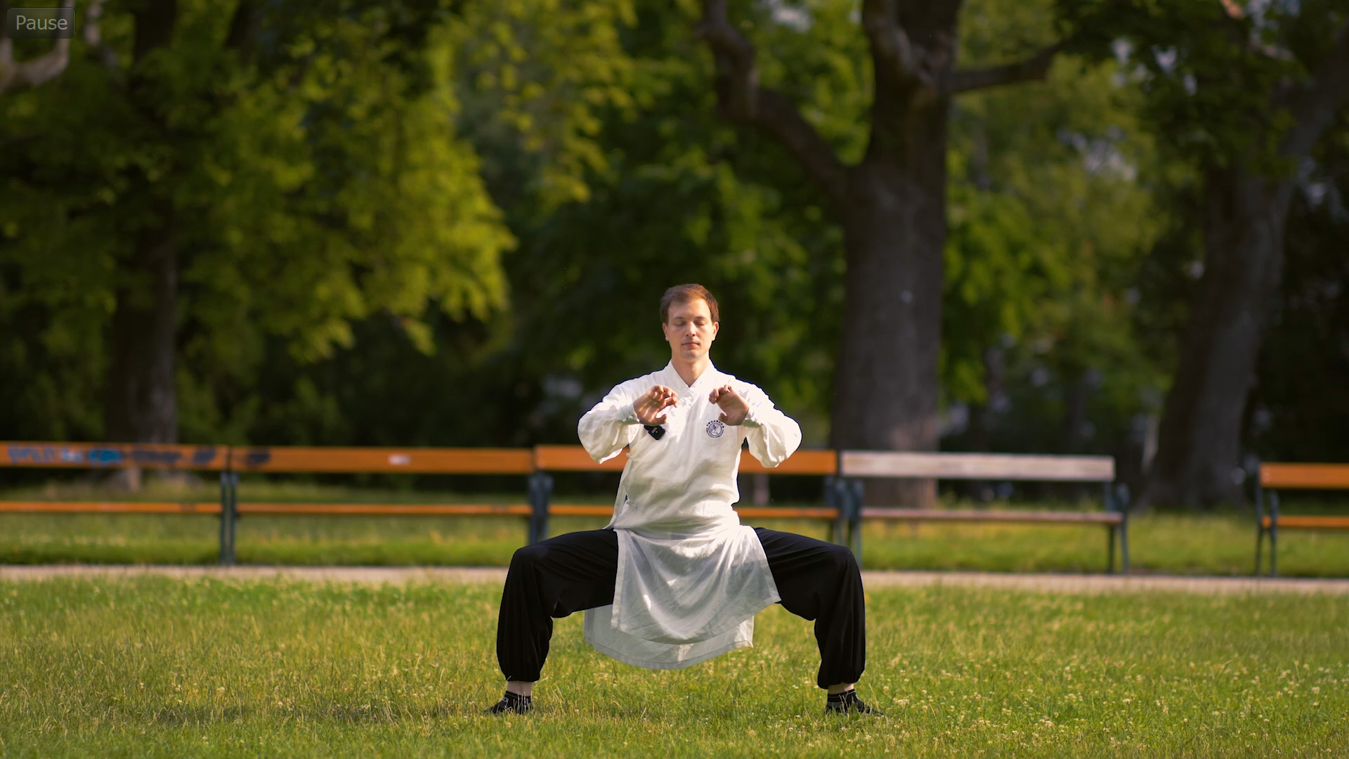 Five Animal (Wu Xing) Qi Gong – Introduction, Principles – Master Course