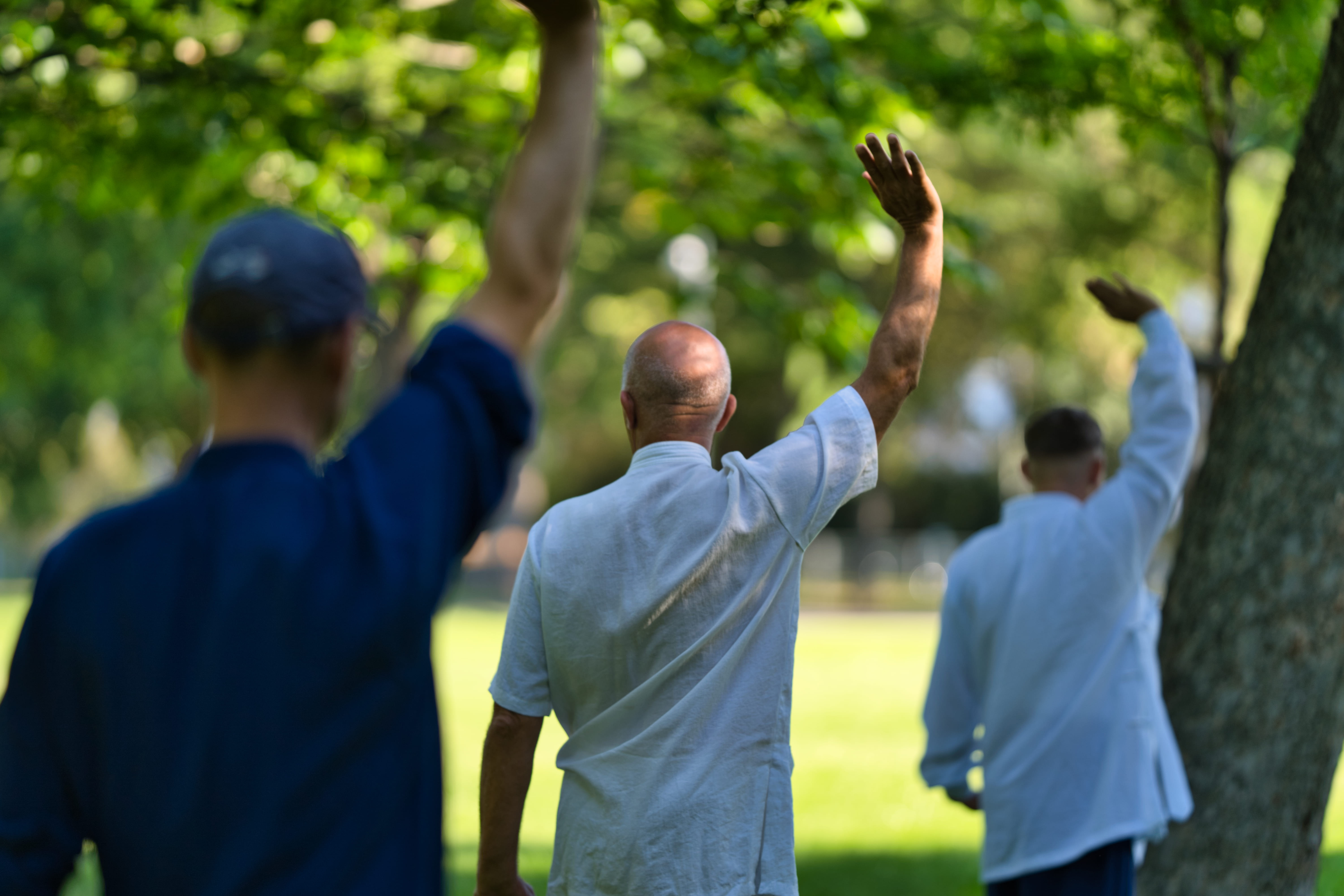 Fix Your Mind and Body – Wudang Qi Gong Workshop