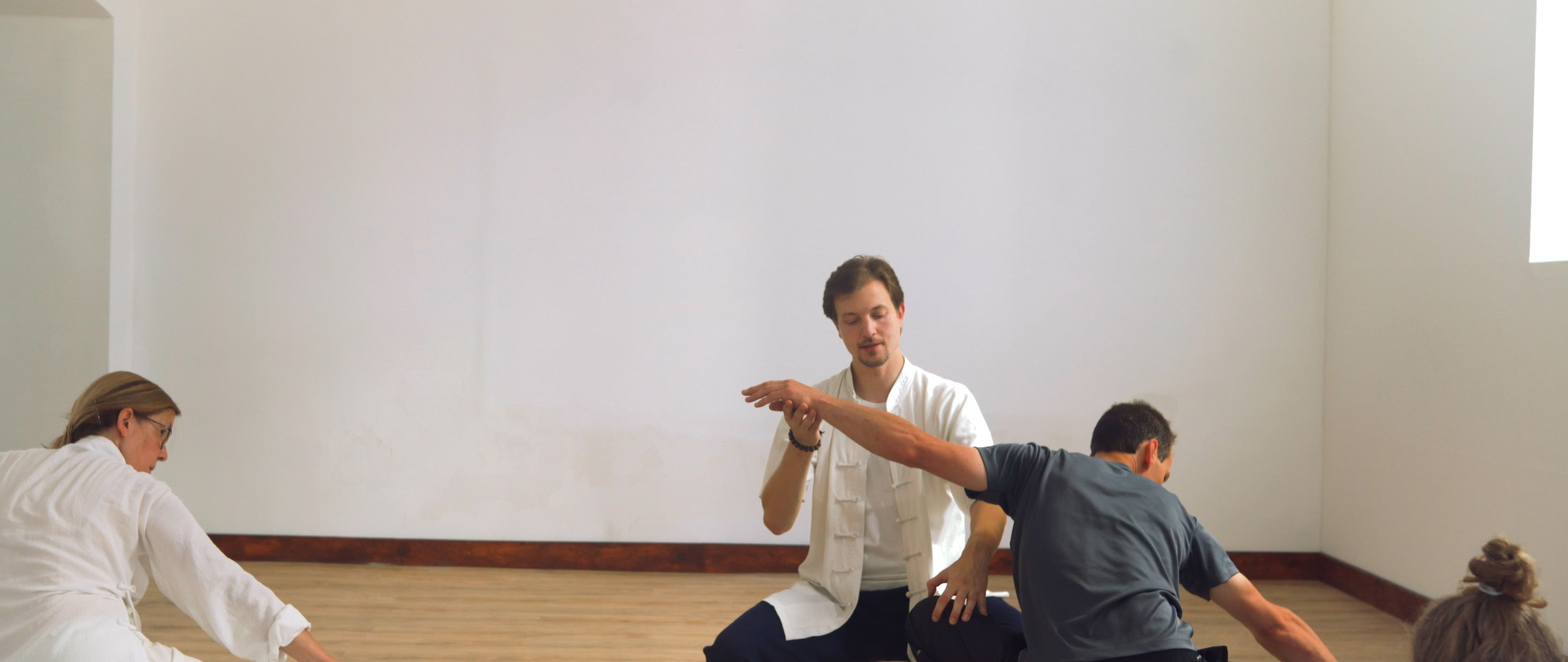 Leopard and Snake Qi Gong Seminar