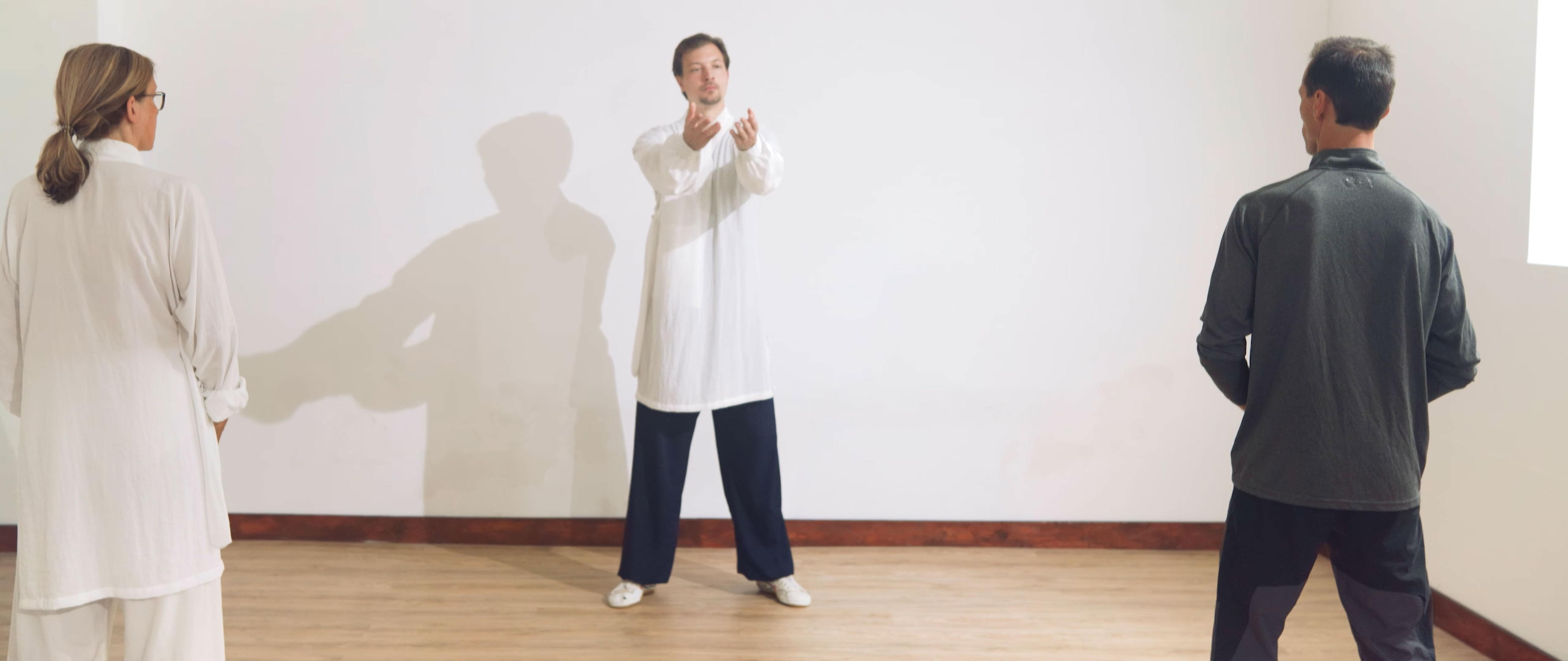 Controlling Movements Without Power – Ba Duan Jin Qi Gong