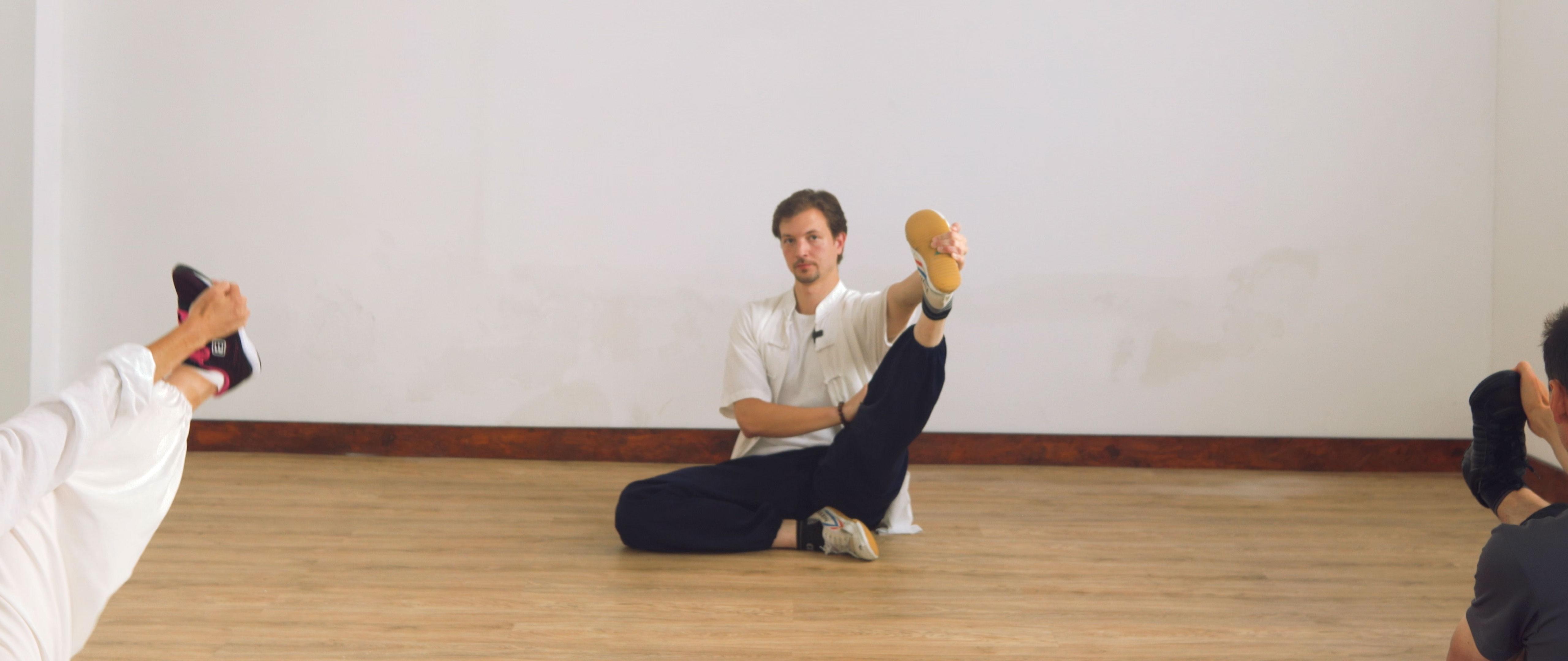 Daoist NeiGong Sitting Self-Cultivation Practice