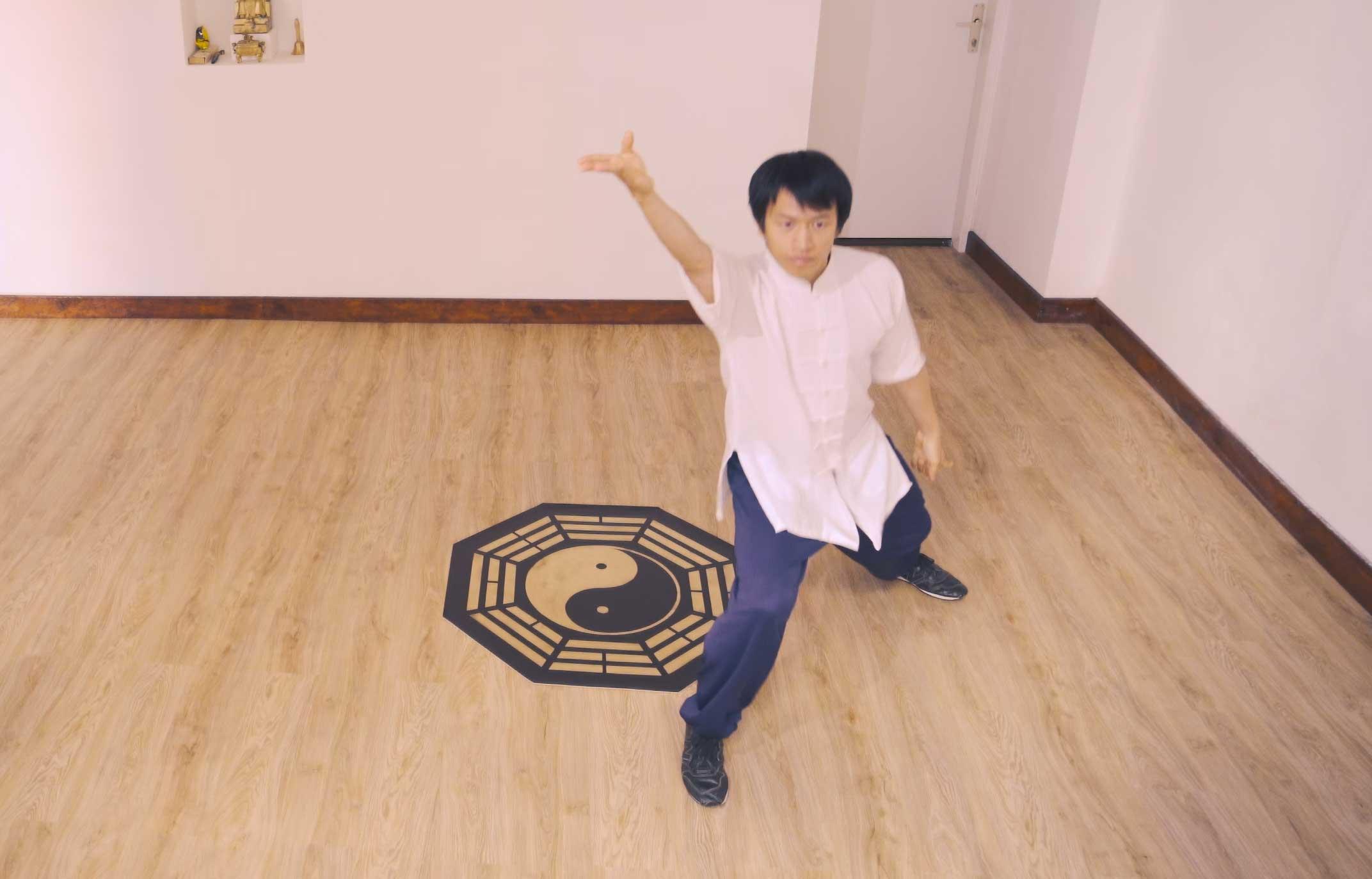 Baguazhang Eight Form (Final)