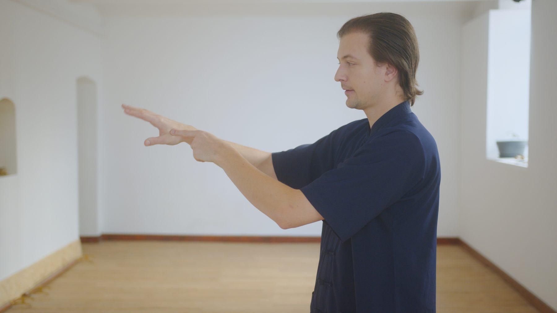 Wudang Tai Chi Push Hands Basics
