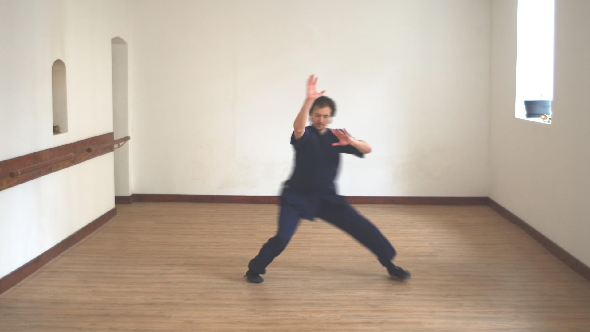 Jibenquan Master Ziji