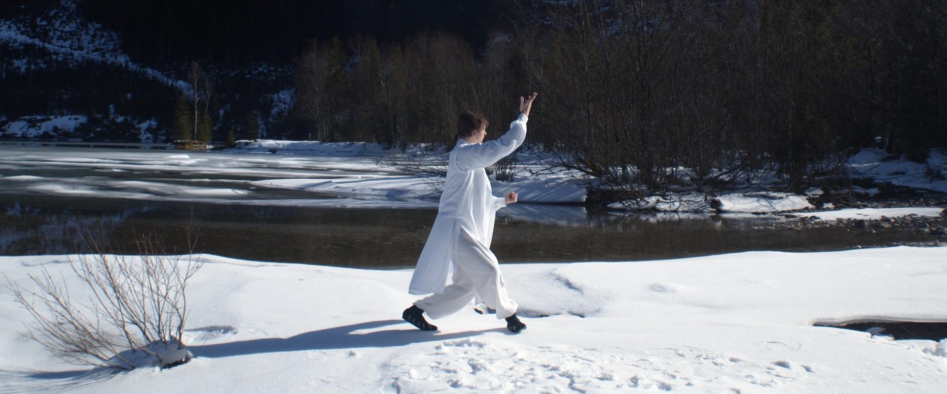 Guide: How You Learn Tai Ji Correctly
