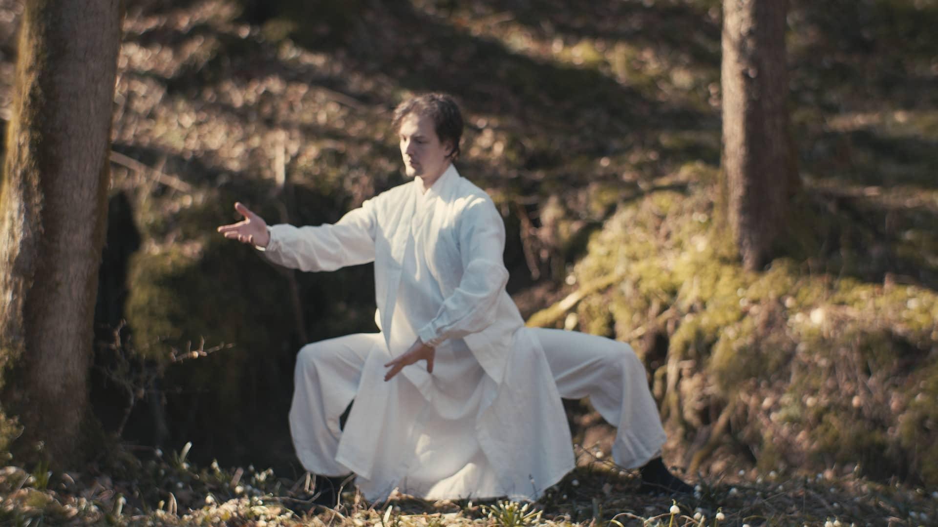 Master Ziji Tai Chi 28