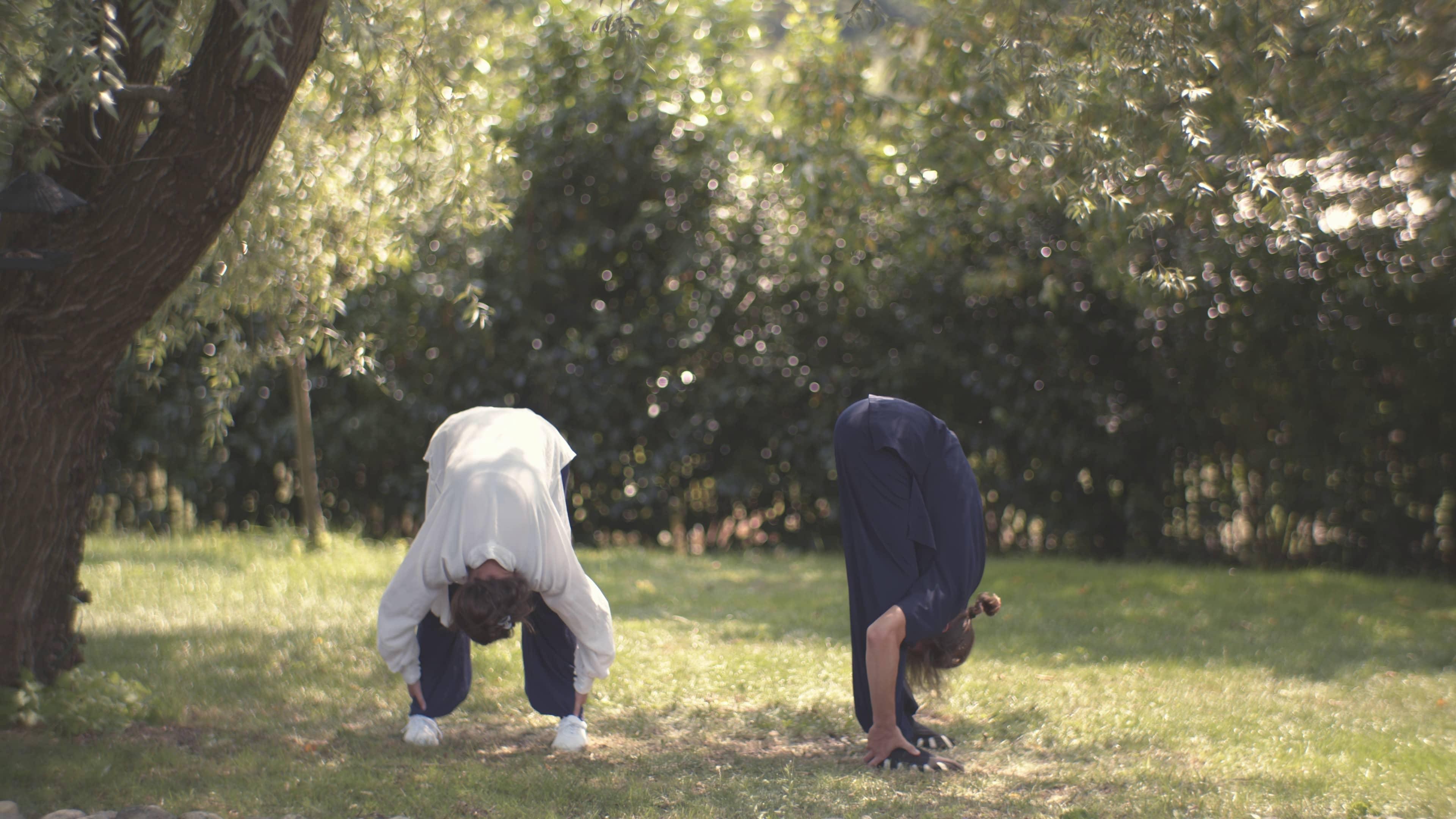 Ba Duan Jin (Eight Brocades) – Shaking the Body – Eigth Movement