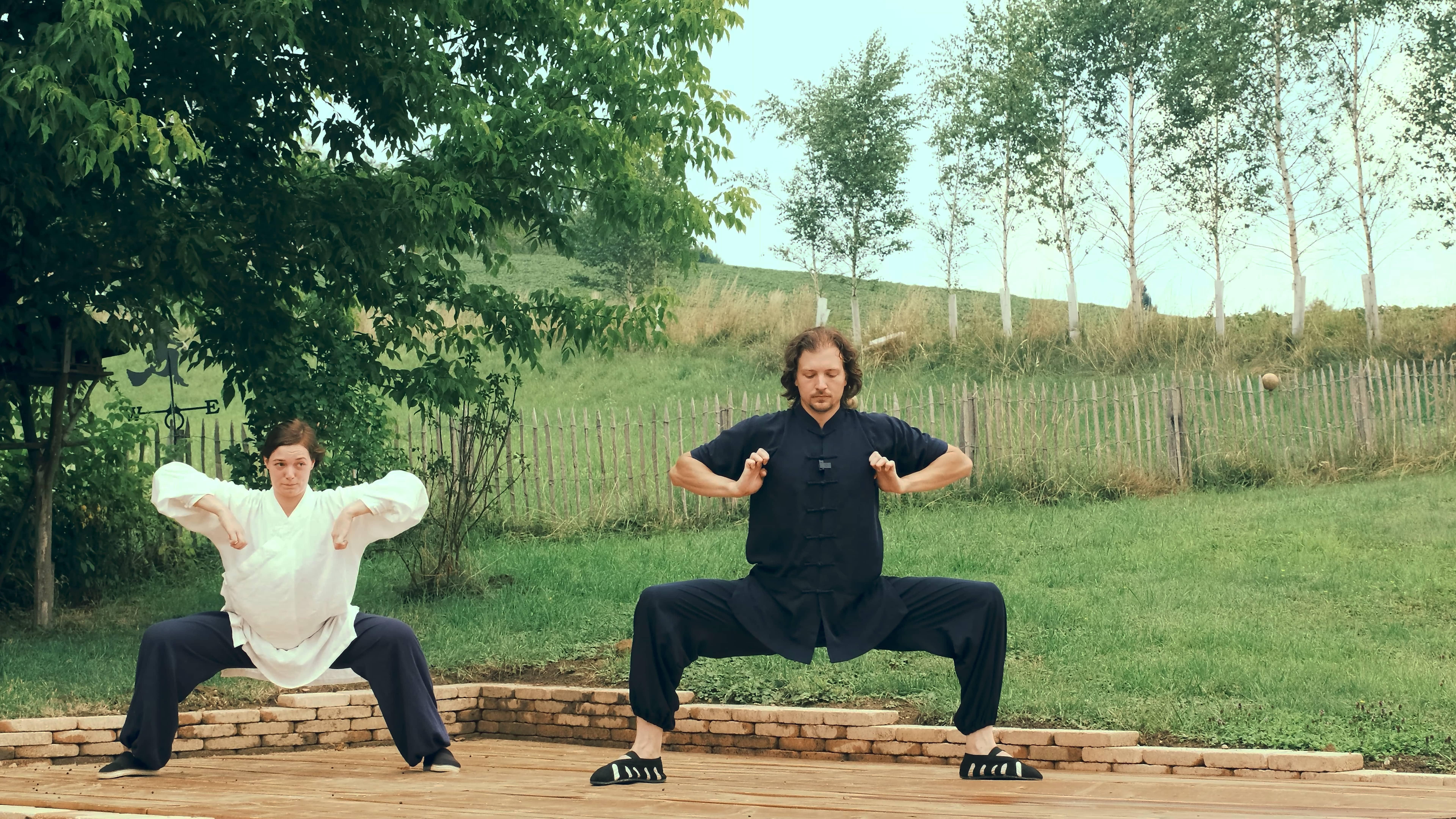 Traditional Wu Xing (Five Animals) Qi Gong (No Instructions)