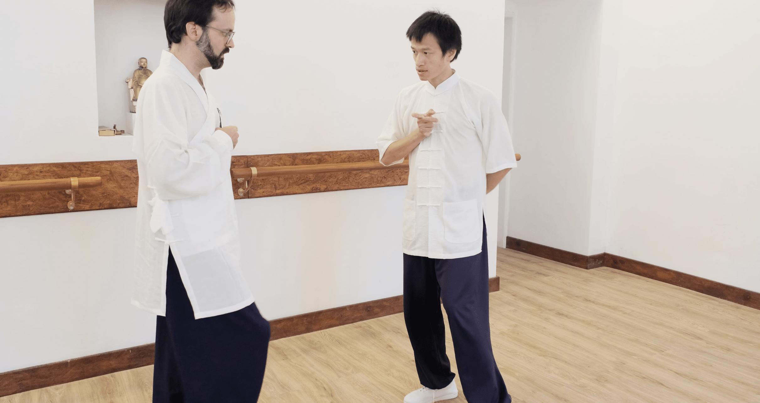 Learning About Spiral Dynamics – Internal Taiji Principles