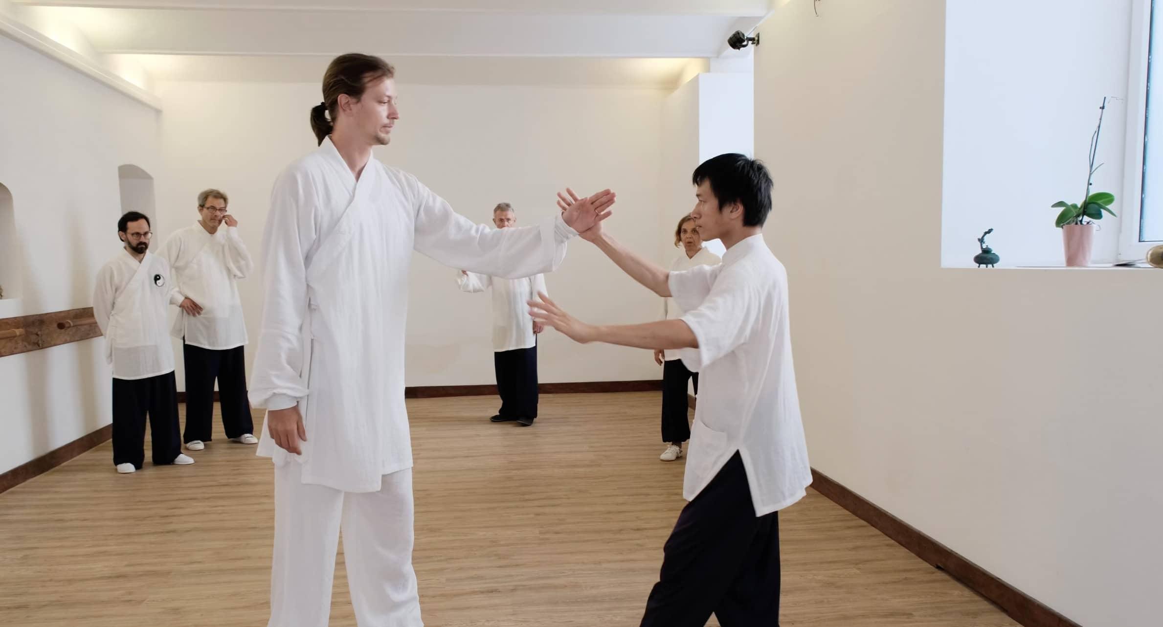Taiji 13 – Single Hand Whip – Part 5
