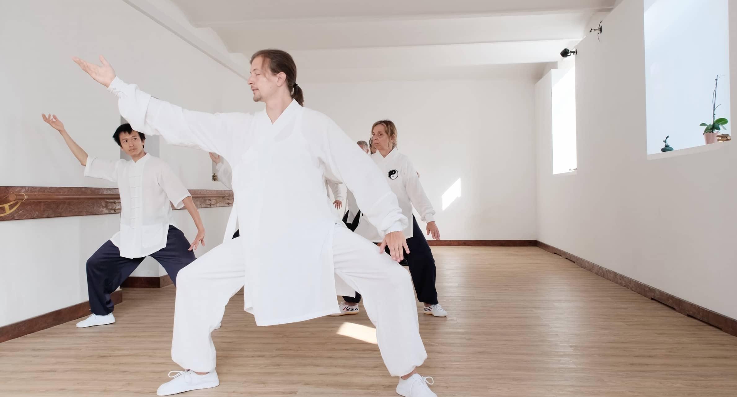 Taiji 13 – Brushing Over The Knee & Shoulder Push – Part 9