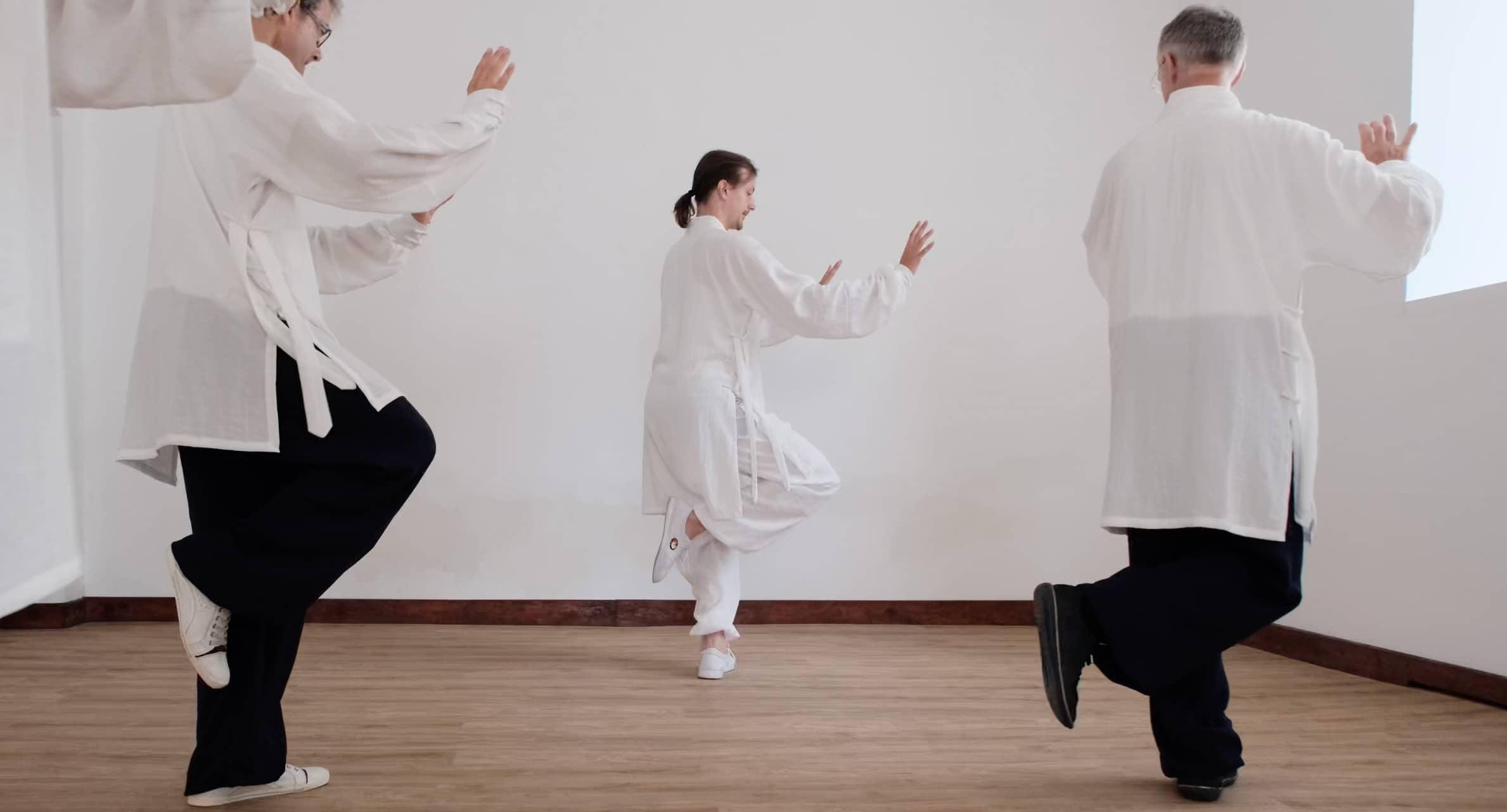 Taiji 13 – Circular Long Step – Part 3
