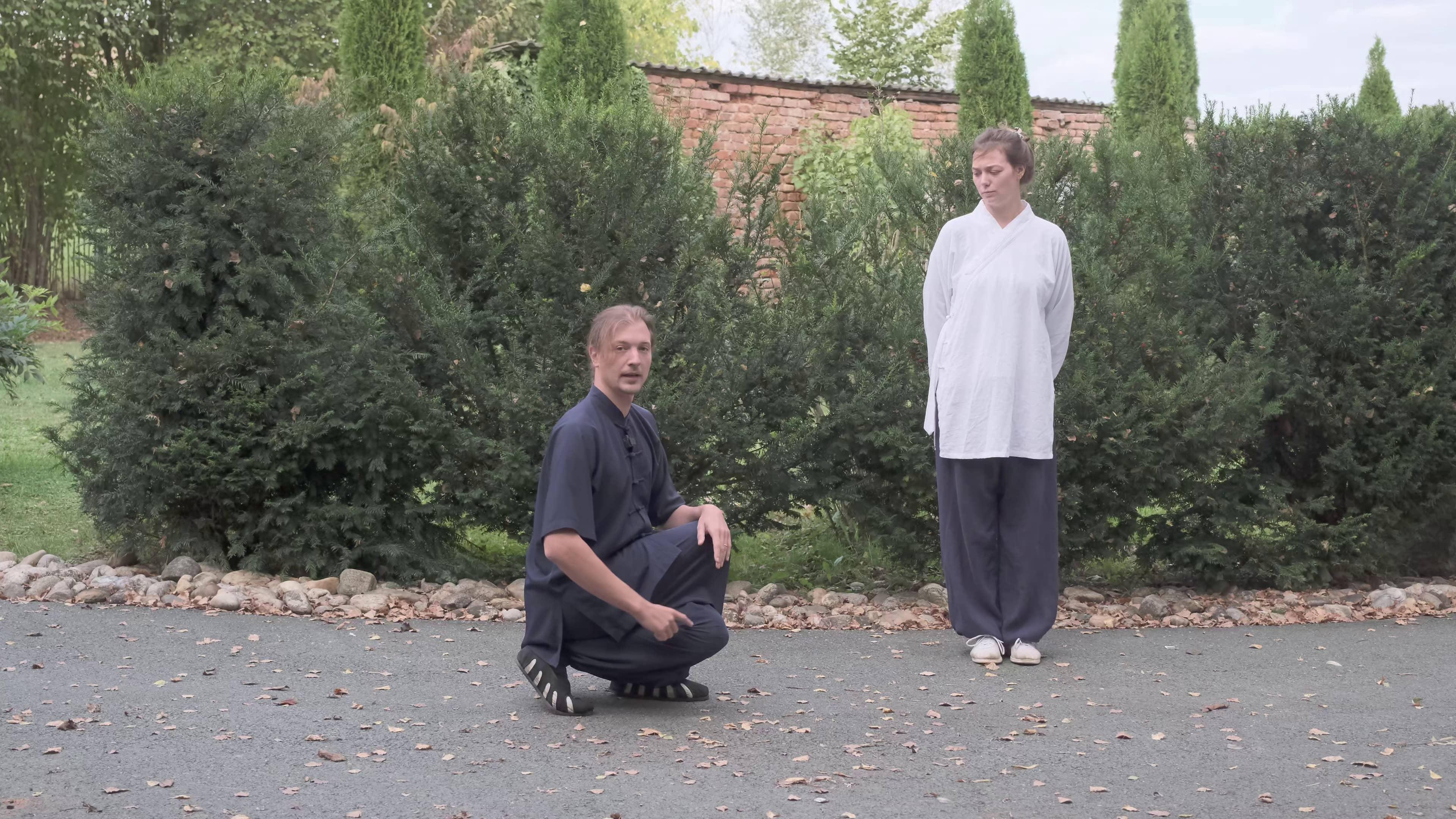 Basic Daoist Strength Training Course Part 2